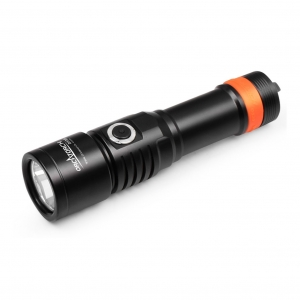 D530 Dive Light